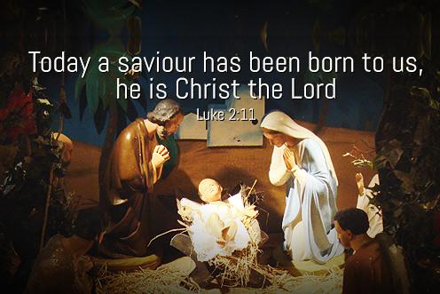 Christmas_2013_3_496-331